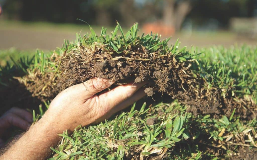 Turf Certification | AusGAP