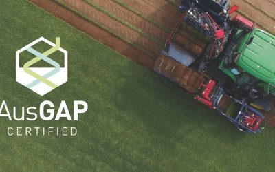 How to know if your turf producer provides AusGAP certified grasses